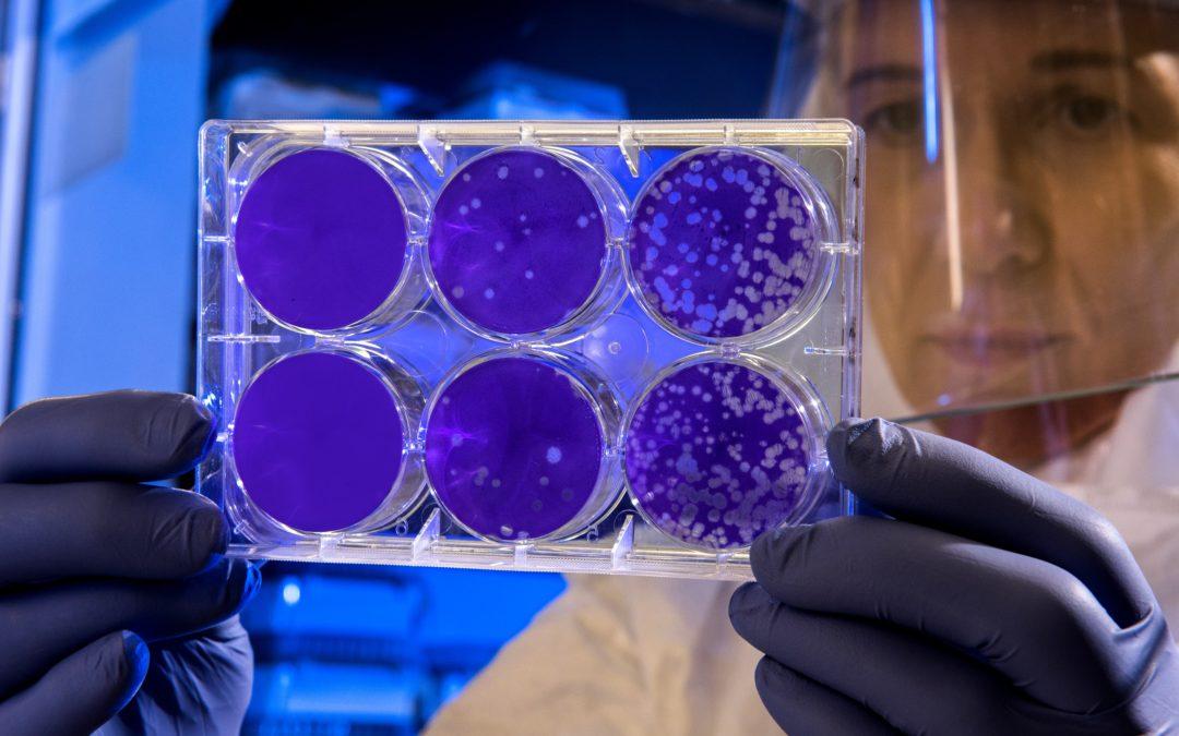 Corona-Virus: Lösung gefunden, allerdings nicht für das Virus sondern für ihre Geldanlage!